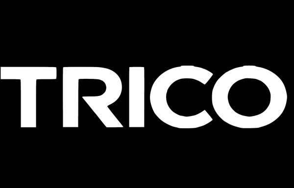 wiper blades Trico